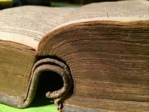 book-515081_1920